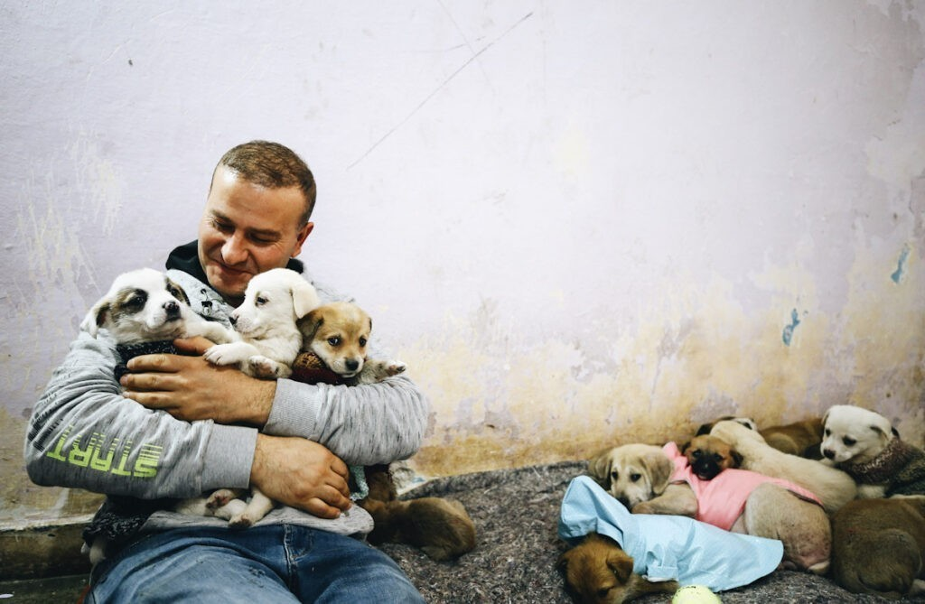 Photo shows Volkan Koc holding stray puppies in a house he rented to shelter them. One of the biggest animal welfare laws of 2021 saw Turkey reclassify stray animals and pets as living beings.