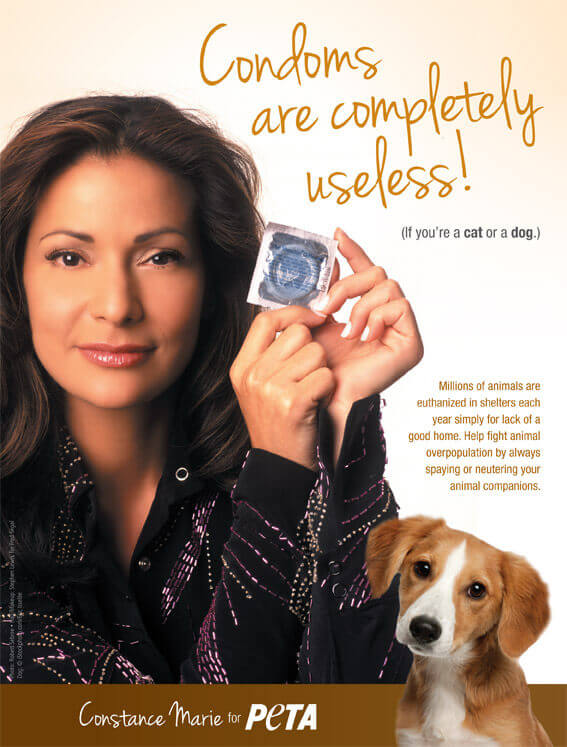 CONSTANCE MARIE: CONDOMS ARE COMPLETELY USELESS! PSA PETA