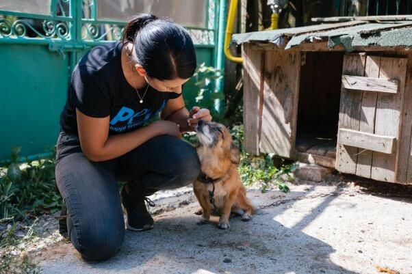 PETA Helps Romania worker with Paulina the dog