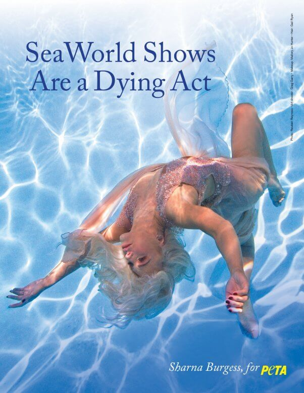 Sharna Burgess of Dancing With the Stars in a Anti SeaWorld Ad for PETA